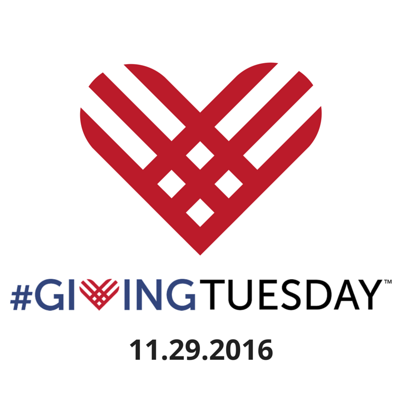 Support METAvivor on #GivingTuesday